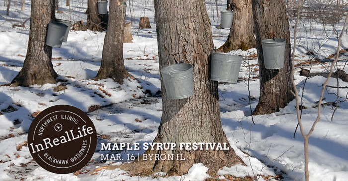 Annual Maple Syrup Festival - Byron Forest Preserve