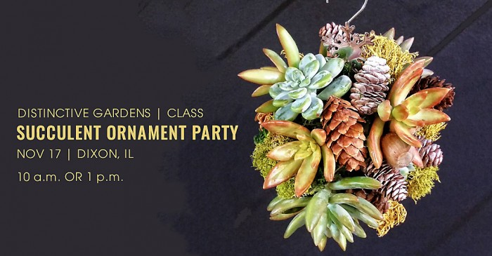 CLASS: Succulent Ornament Party