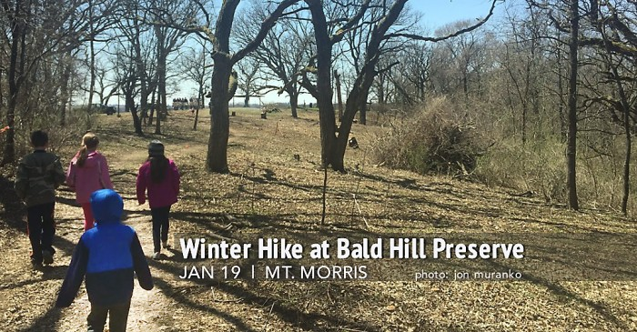 Winter Hike at Bald Hill Preserve