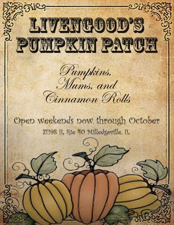 Livengood's Pumpkin Patch