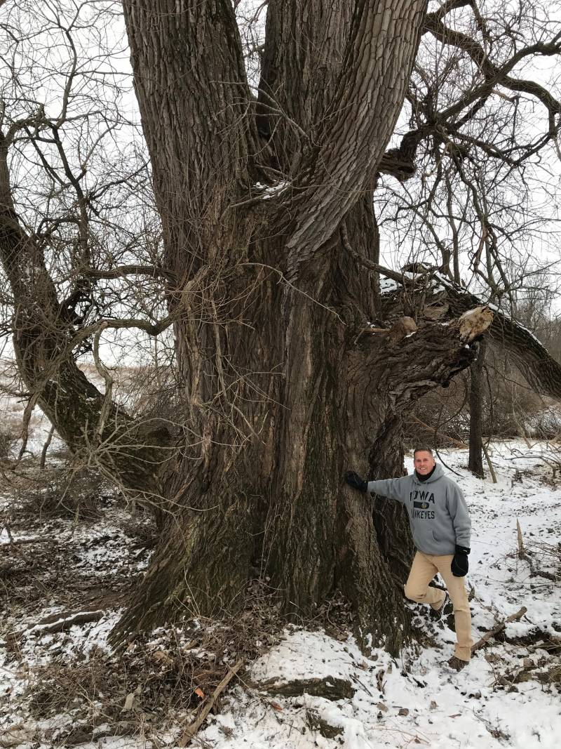 Bald Hill Preserve - Illinois Biggest Tree Award Winner for 2018