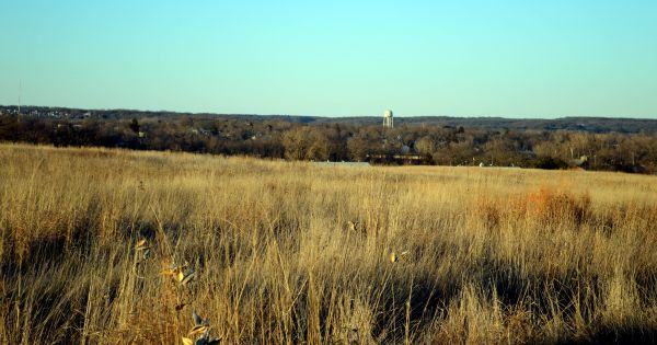 Byron Forest Preserve and Jarrett Prairie Center